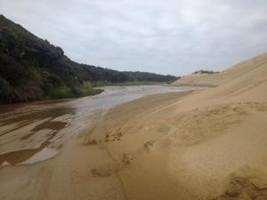 Day 5; Waitiki Landing – The Bluff
