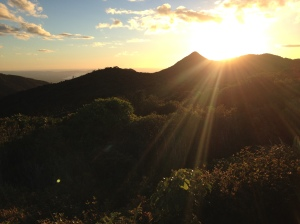 View from Mt Pirongia helipad.